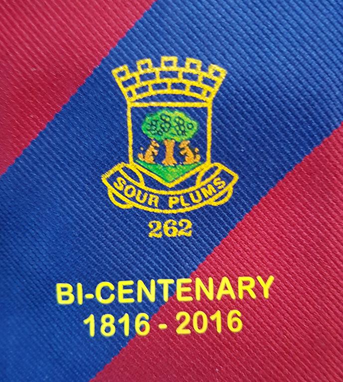 bicenenary tie logo
